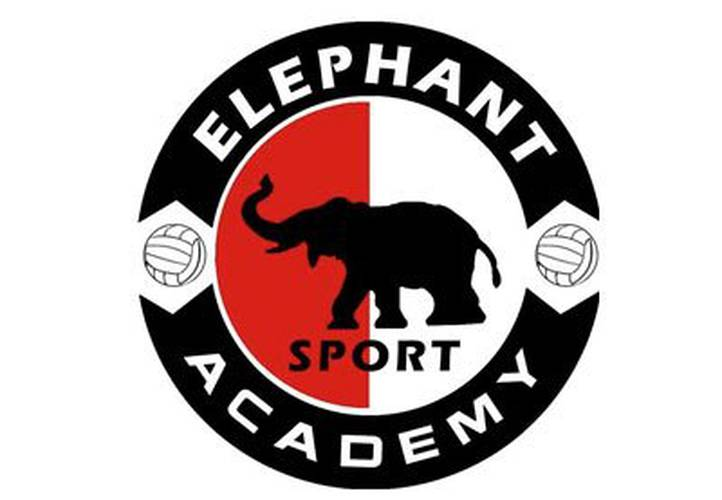 Arranca de nuevo la Elephant Sport Academy en el Beach Club del resort Holiday World Holiday World Resort